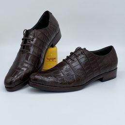 Giày da cá sấu cao cấp GC-08B1D