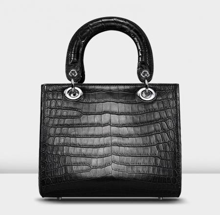 Túi xách da cá sấu cao cấp - XCSDIO
