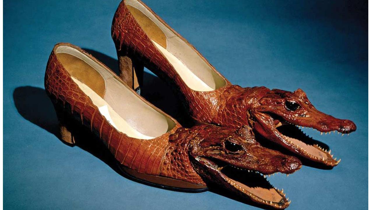 Những sản phẩm độc đáo từ da cá sấu khiến nhiều người kinh ngạc!