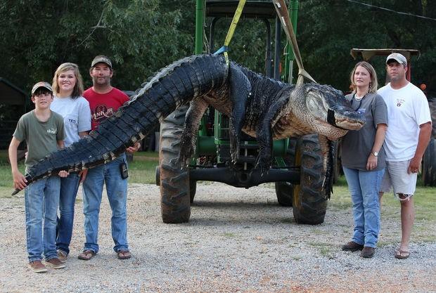 10 giờ vật lộn với cá sấu khổng lồ nặng gần nữa tấn