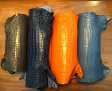 Phân biệt da cá sấu xịn và da cá sấu phun màu