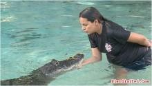 Bà bầu vật nhau với cá sấu ngày 3 lần để dưỡng thai